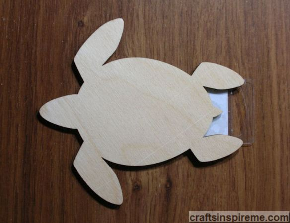 Raw Wood Turtle