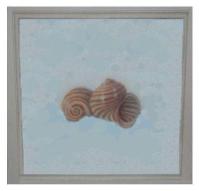 Before Seashell Plaque