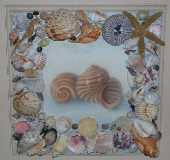 Shell Plaque
