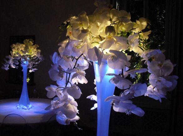 Lit Orchid Centerpieces