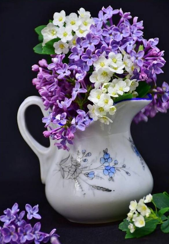 Water Pitcher with Purple Lilacs & White Sweet Alysse