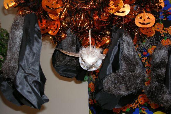 Bats & Owl
