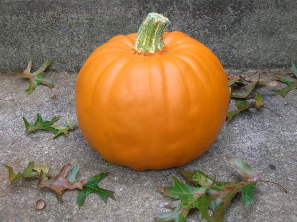 Craft Pumpkin