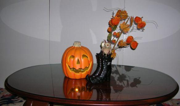 Boots & Pumpkin