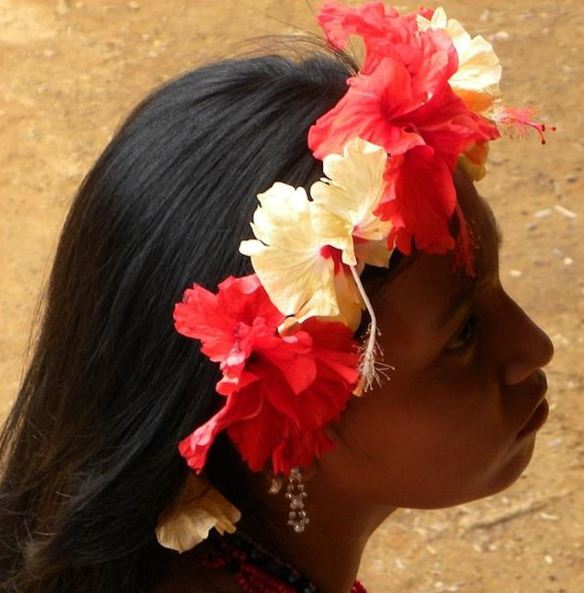 Hibiscus Crown