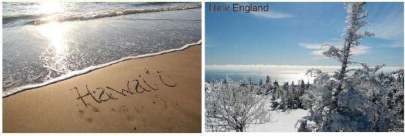 Hawaii & New England
