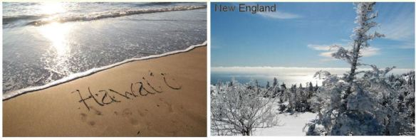 Hawaii & New England
