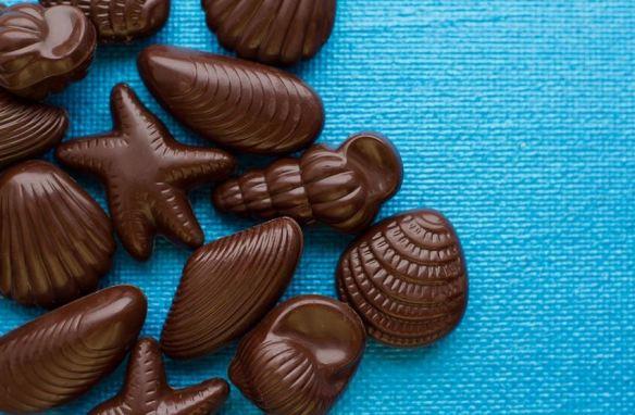Solid Chocolates