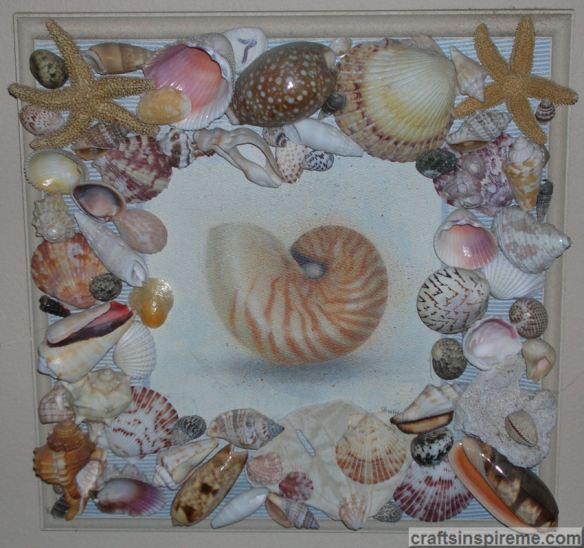Sea Shell Plaque