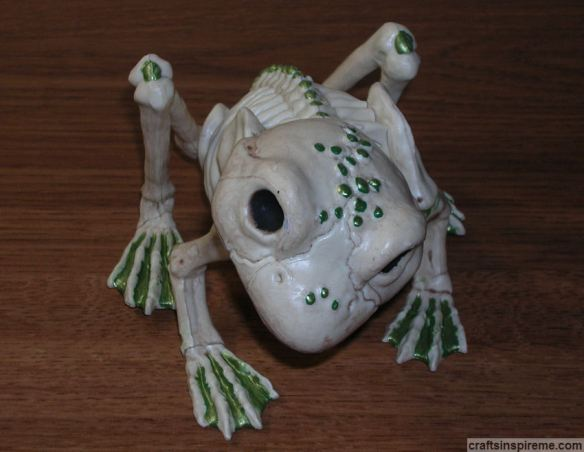 Finished Frog Skeleton