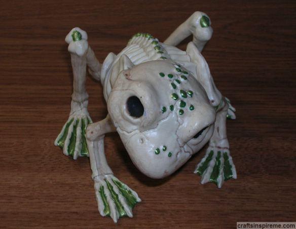 Finished Frog Skeleton