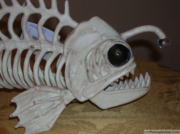 Fish Head Before