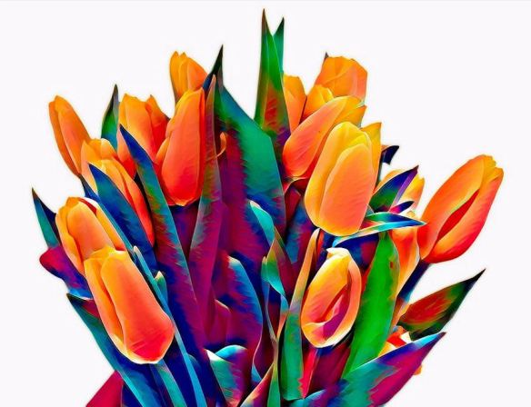 Graphic Arts Tulips